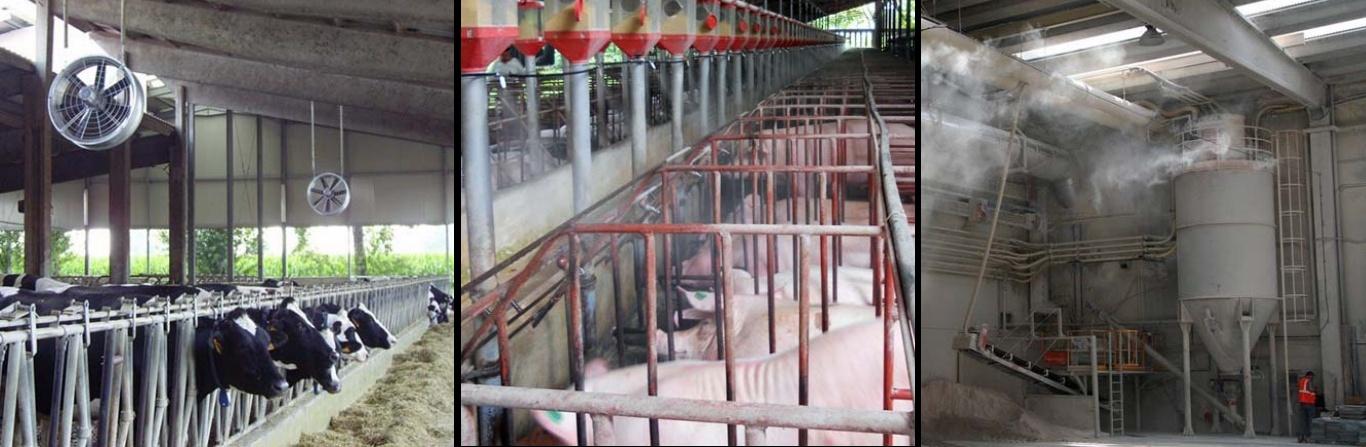 Smanjenje temperature na farmama i u štalama