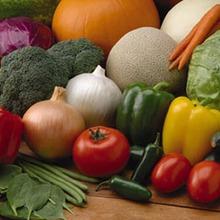 Semena povrća