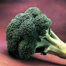 Seme brokolija