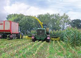 MAFEX® Silage