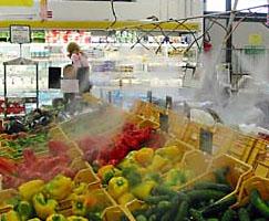 Hidratizacija voca i povrca