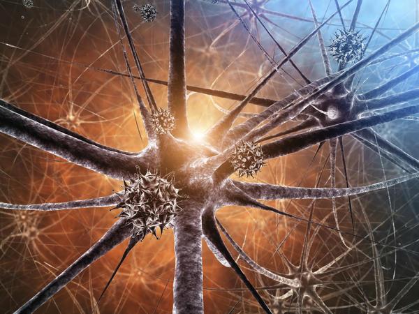 neurotech program